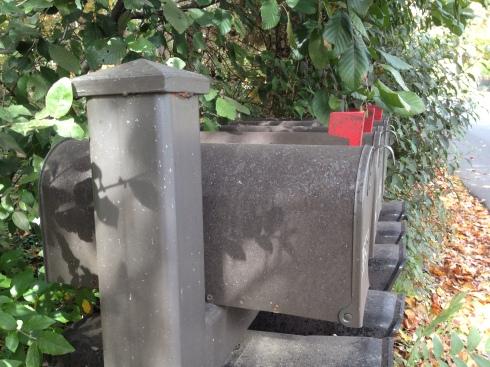 Photo-Mailbox